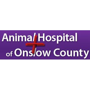 Animal Hospital of On