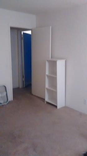 Looking for a new roommate! :)
