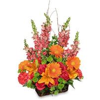 Flowers by Rhonda