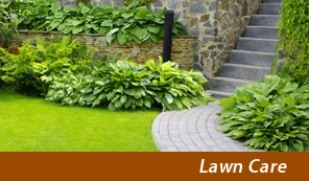 The Other Side Lawn Care