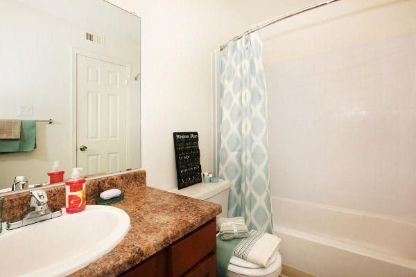 $780 One bedroom Apartment for rent
