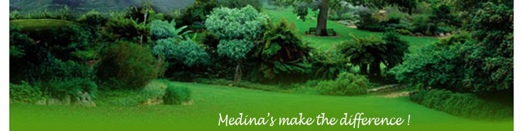 Medinas Junk Removal and Hauling
