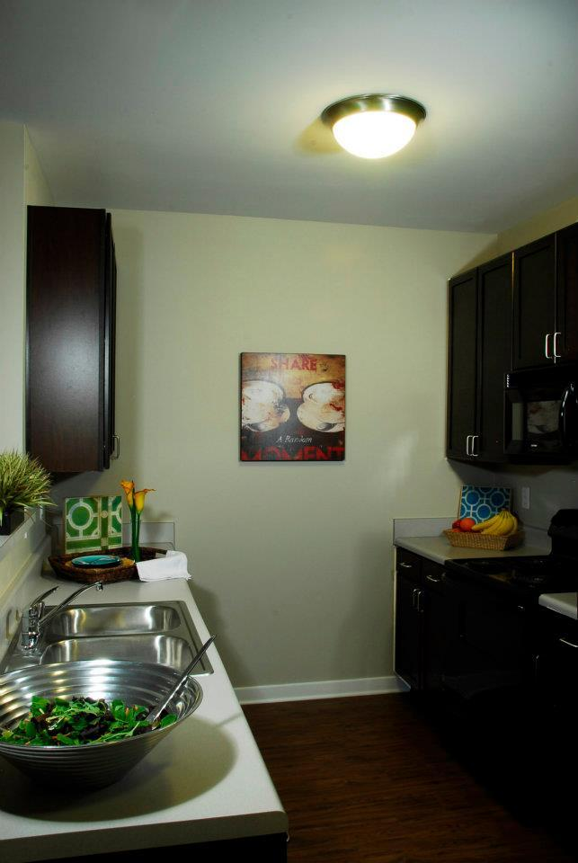 $675 Studio Apartment for rent