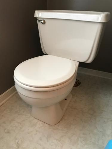 Complete Bone Round Toilet