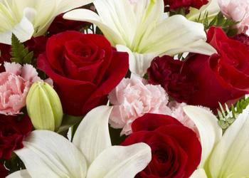 Bella's Flowers