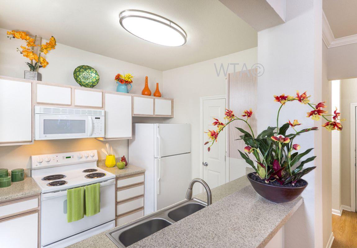 $1013 Two bedroom Apartment for rent