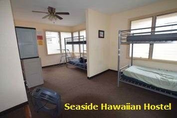Ensure Comfortable And Affordable Stay Waikiki Near Bus