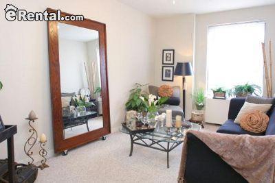 $893 Studio Apartment for rent