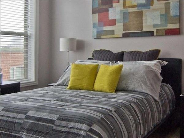 $1325 One bedroom Apartment for rent
