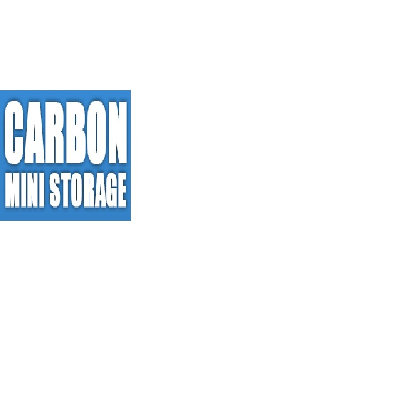 Carbon Mini Storage