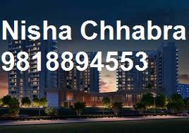 Nisha98l8894553 Ambience Creacions Price Sector 22 Gurgaon