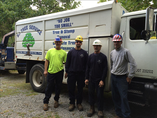 B J Tree Service