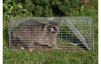 Critter Control of Greater Nashville LLC