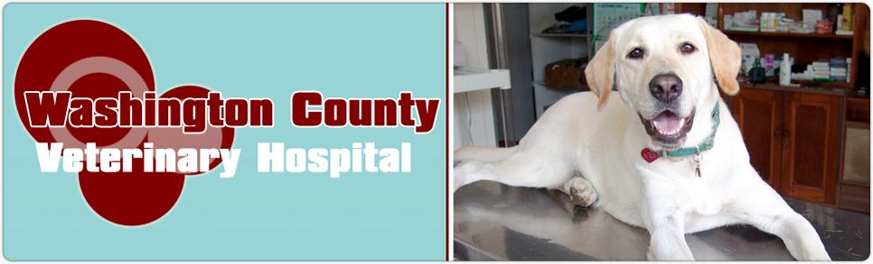 Washington County Veterinary Hospital