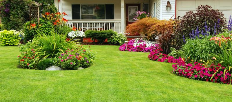 Looking For  Best Lawn Care and Landscaping Services in Ocala?