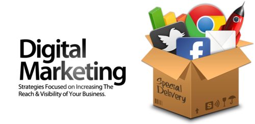 Best Digital Marketing Software Development Company in India