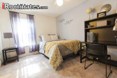 $595 Four bedroom Apartment for rent