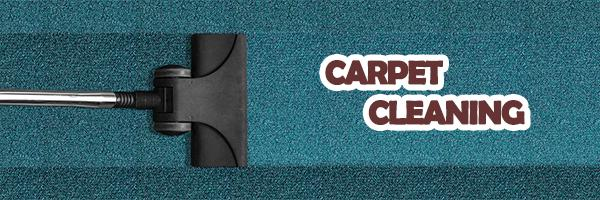 Magnificent Services of Eagle Carpet Cleaning