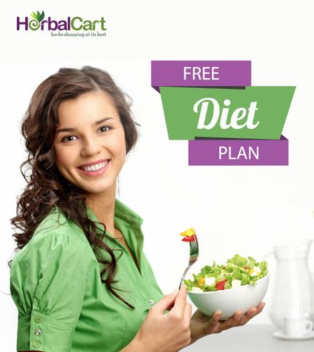 The Customized & Free Diet Plan For You