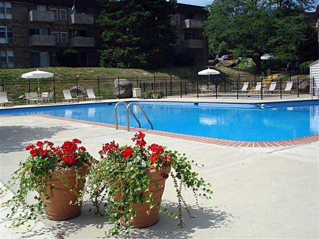 $1011 One bedroom Apartment for rent