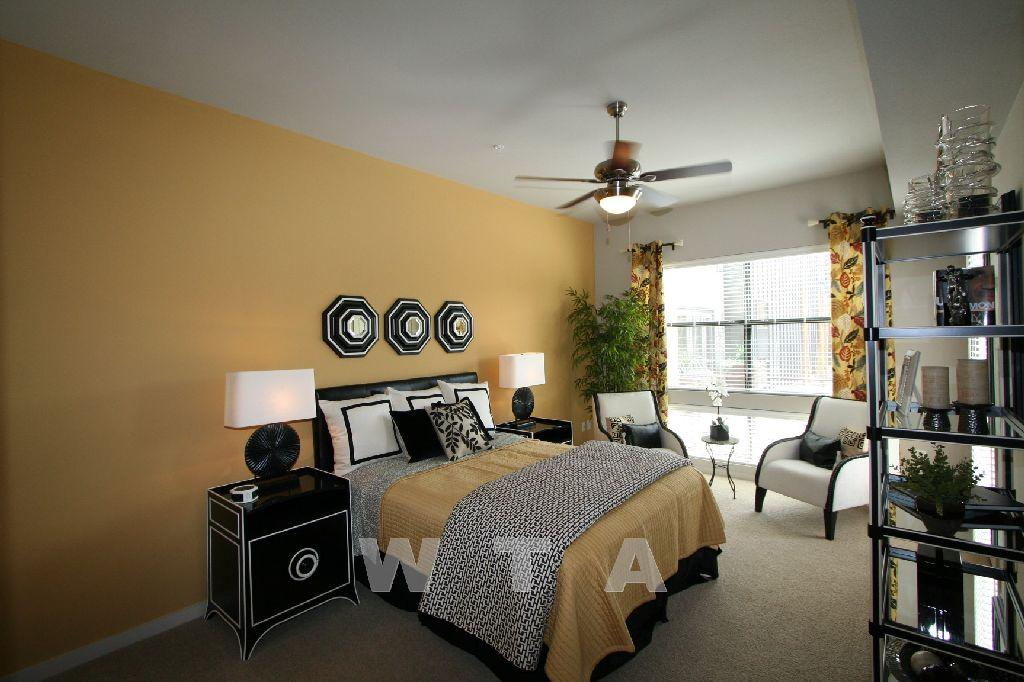 $1116 One bedroom Apartment for rent