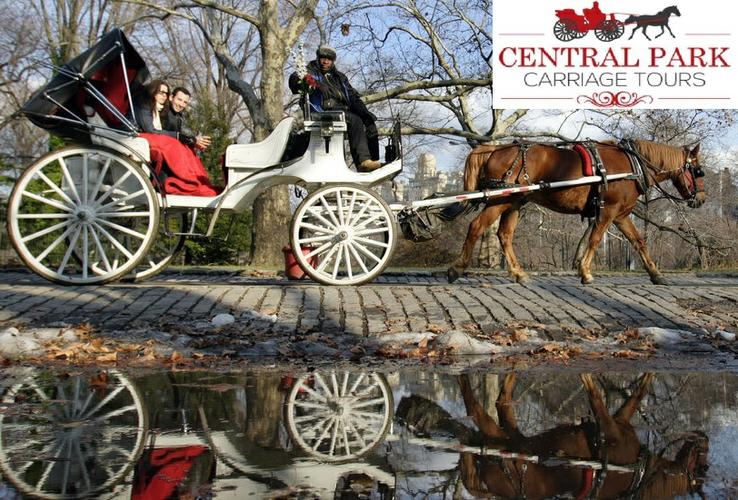 Horse & Carriage Rides in Central Park NYC