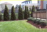 Moyers Lawn Service and Landscaping