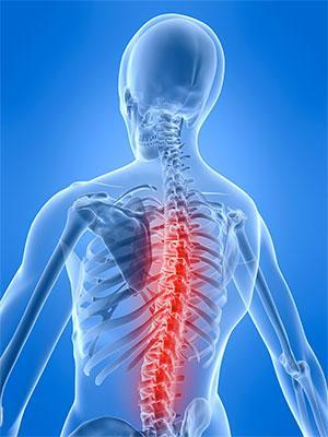 Regine Chiropractor