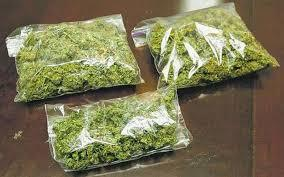 Aloha! Enjoy the tropical sensation indoors stuffs....  Heavy Buds with lots of resin 100% natural..