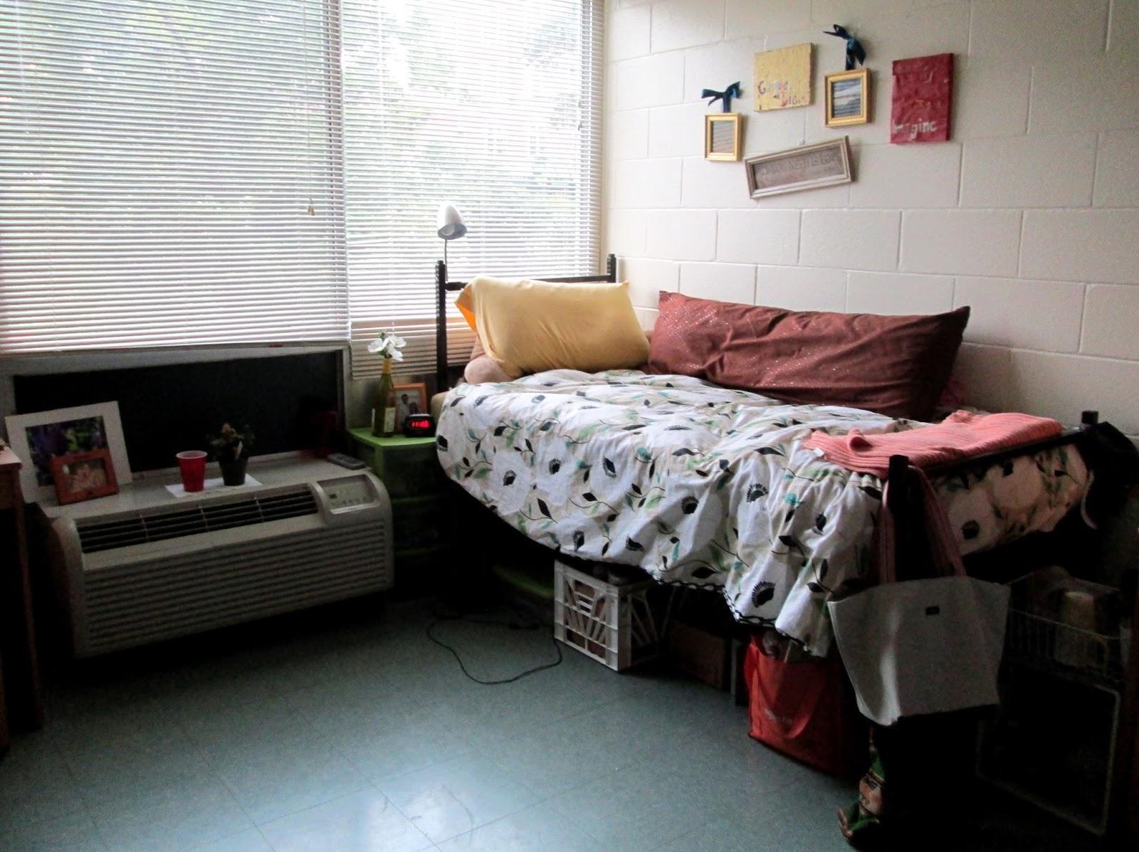 Dormstormers - Alaska