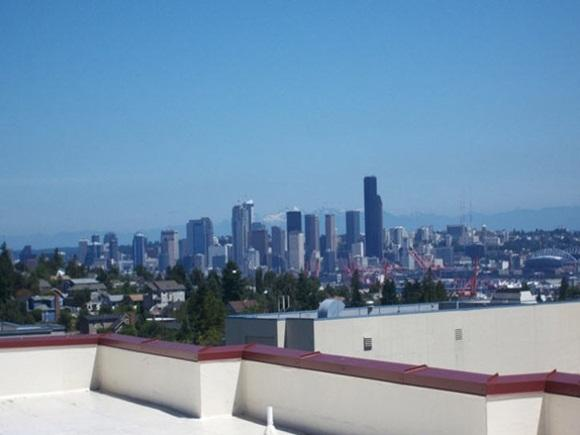 $1302 One bedroom Apartment for rent