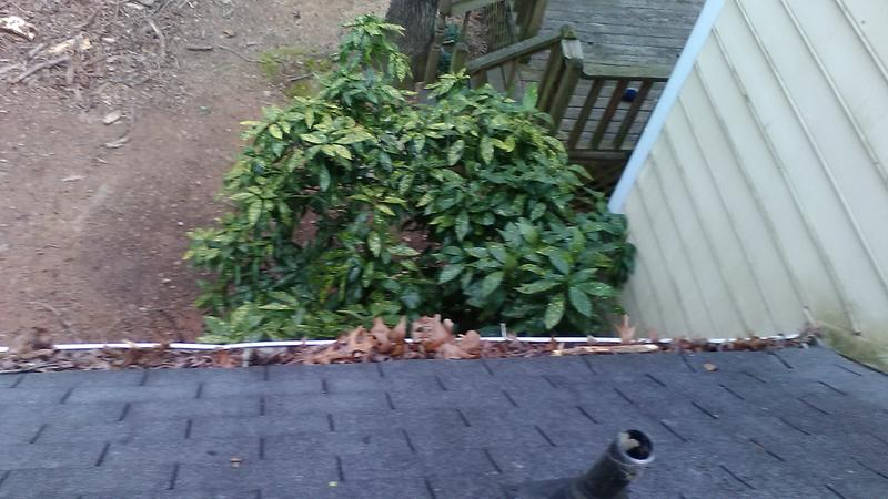 $75 SPRING GUTTER CLEANING SPECIAL!!