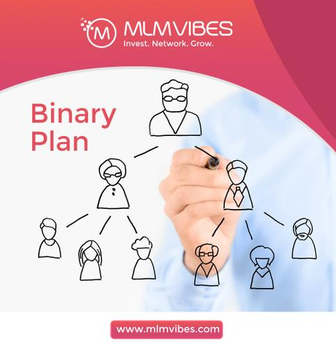 Commission Calculation for Binary Plan explained for you