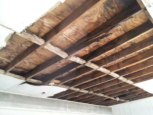 J & P Restoration, LLC