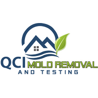 QCI Mold Removal and Testing