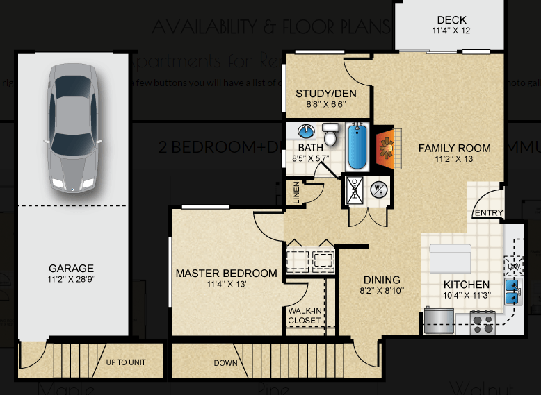 $1437 One bedroom Apartment for rent