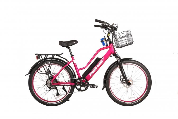 Brand New Electric Bikes