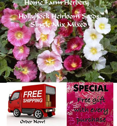 Hollyhock Heirloom Seeds Single Mix Mixed, Order now, FREE shipping & free gift