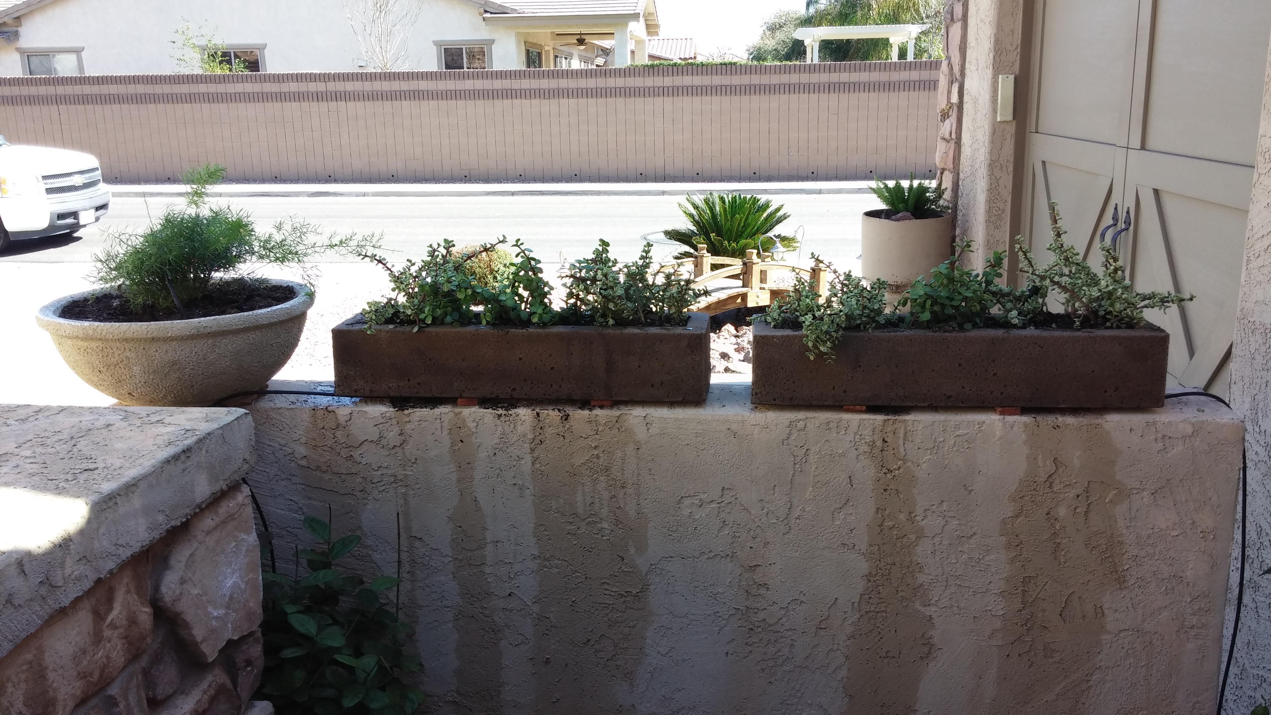 Desert Affects Landscaping