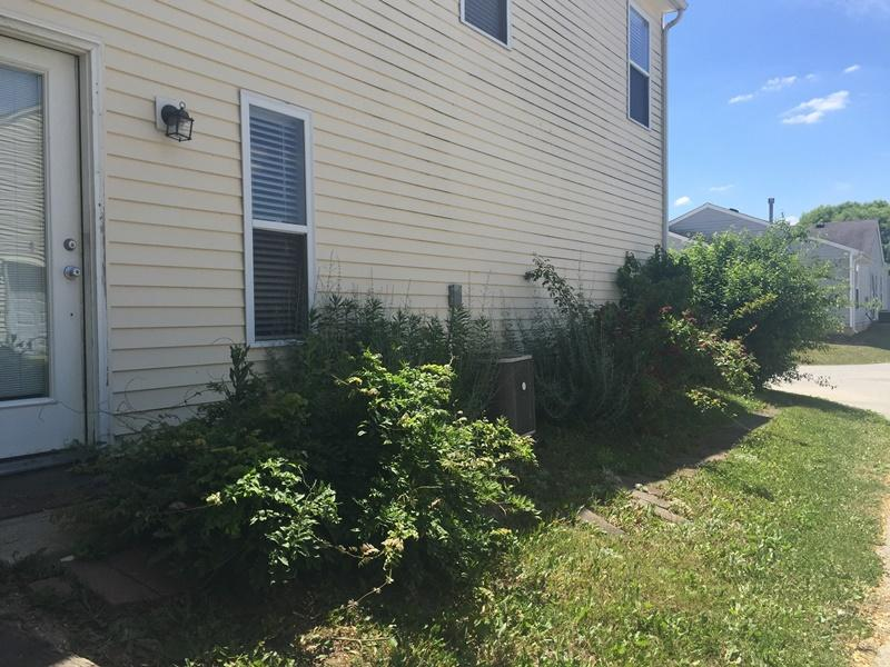 $1295 Three bedroom Apartment for rent