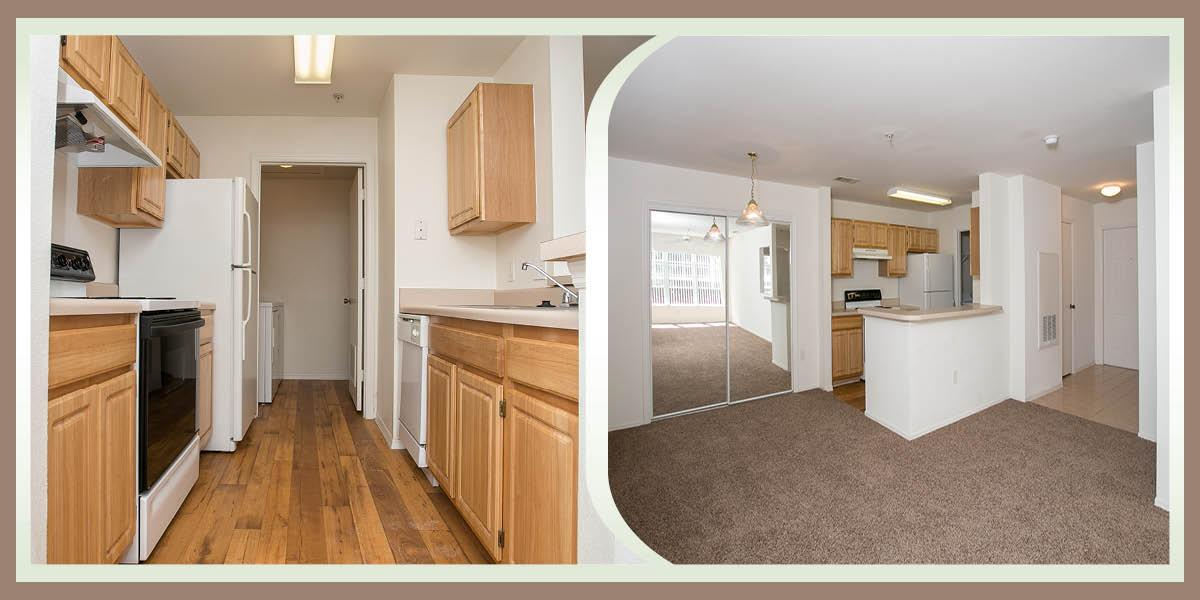 $803 One bedroom Apartment for rent