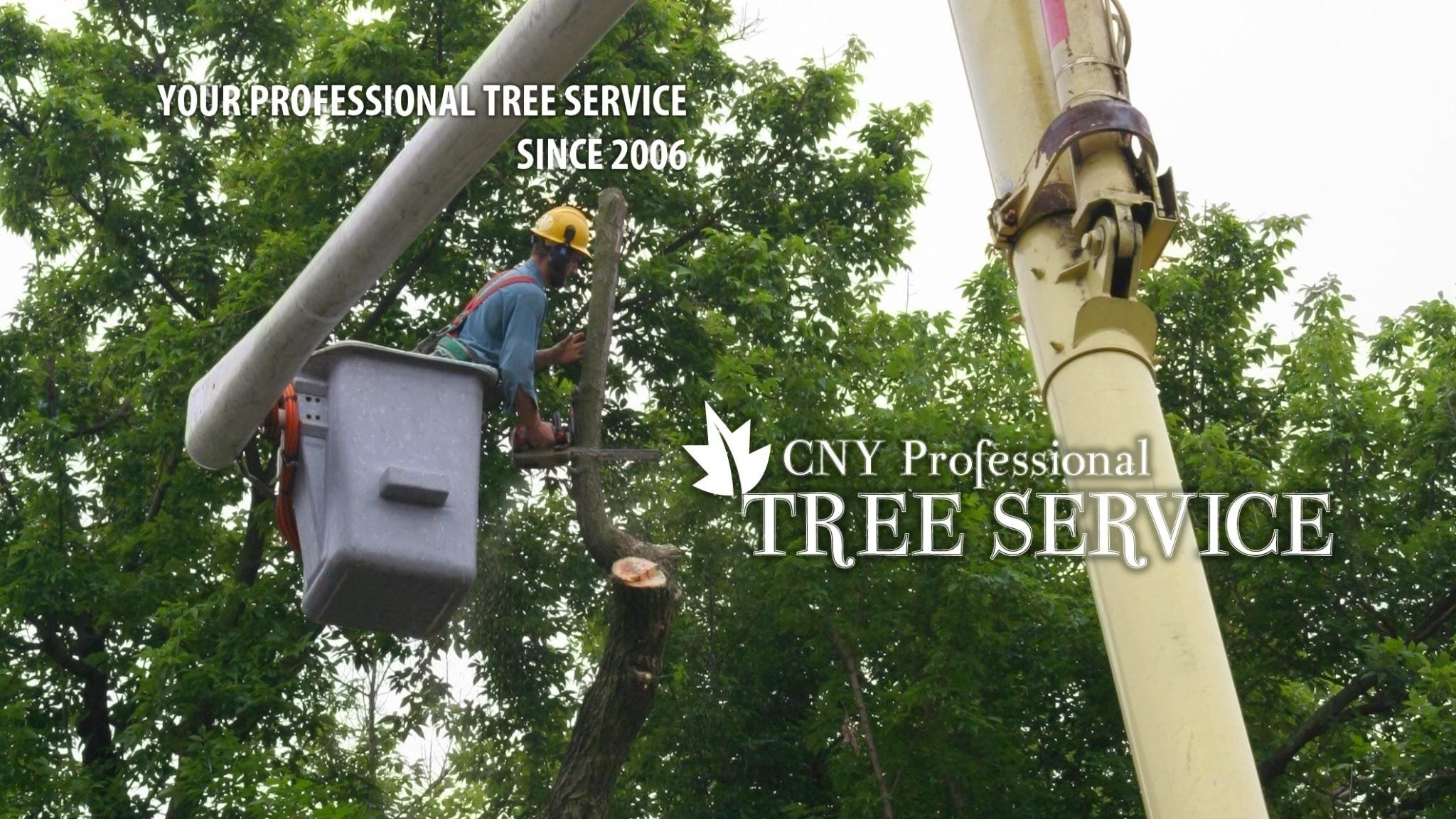CNY Professional Tree Service