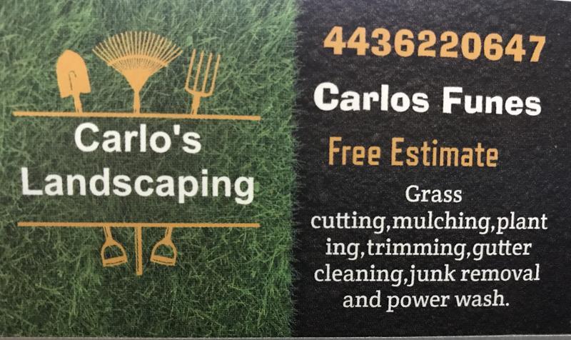Carlos Lawn Service