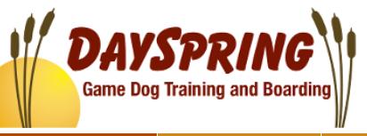 Dayspring Retrievers/ Kennels