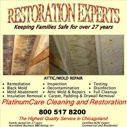 Foundation Crack Repair!  Mold / Water / Mold Damage and Cleanup.  A+ Rated BBB