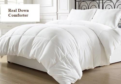 Organic Down Comforter USA Made @ WellLivingShop