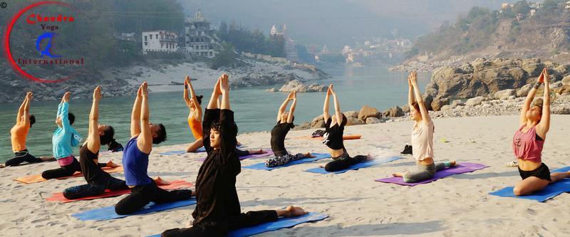 Find the best School of Yoga Teacher Training in Rishikesh, India