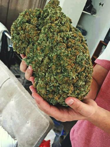 HIGH QUALITY MEDICAL MARIJUANA FOR SALE
