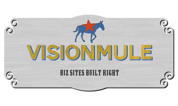 VisionMule