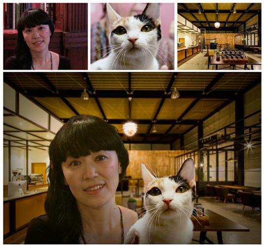 Lovely pet photo retouching service